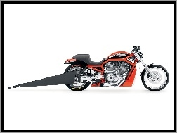 Harley Davidson Screamin Eagle V-Rod, Muscle